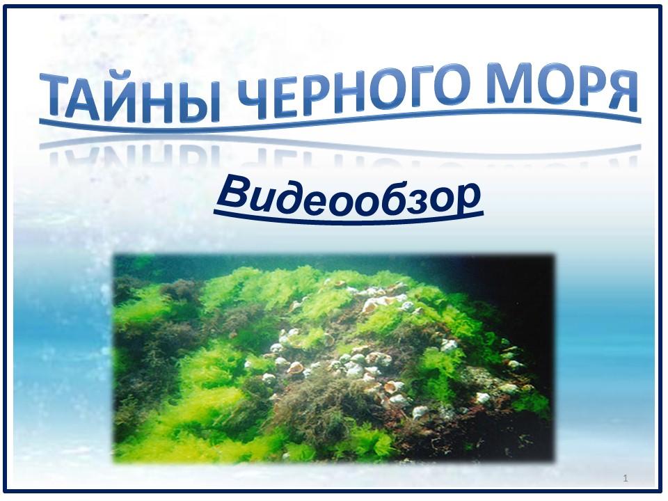 День Черного моря 2020 чист